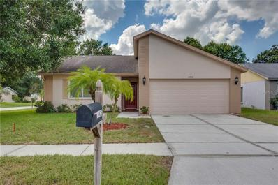 11425 Smokethorn Drive, Riverview, FL 33579 - MLS#: O5735320