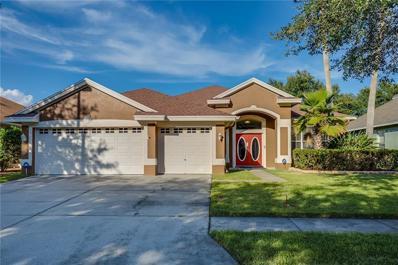 10712 Tavistock Drive, Tampa, FL 33626 - MLS#: O5736065
