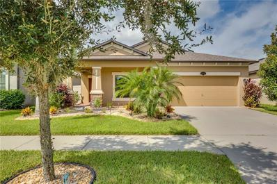 11410 Blue Crane Street, Riverview, FL 33569 - MLS#: O5736185