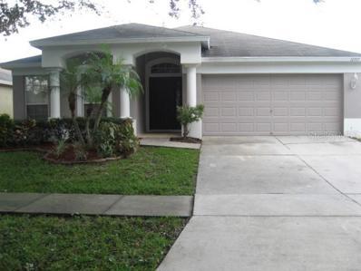 12917 Early Run Lane, Riverview, FL 33578 - MLS#: O5736714