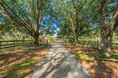 12129 Sweet Hill Road, Polk City, FL 33868 - MLS#: O5738052