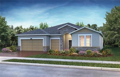 806 Hidden Moss Drive, Groveland, FL 34736 - MLS#: O5738464