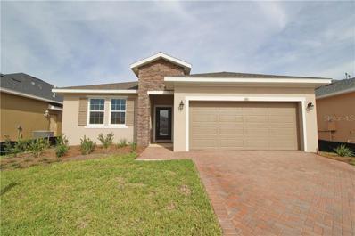 805 Hidden Moss Drive, Groveland, FL 34736 - MLS#: O5738477