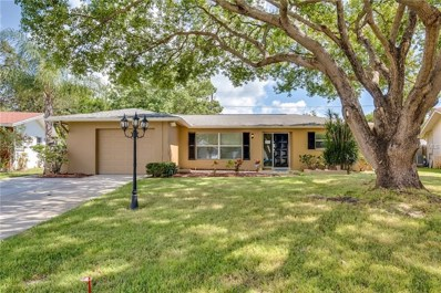2171 Pine Ridge Drive, Clearwater, FL 33763 - MLS#: O5738986