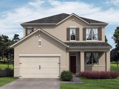 16229 Yelloweyed Drive, Clermont, FL 34714 - MLS#: O5739255