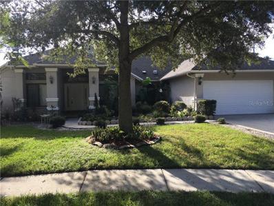 6207 W Greenwich Drive W, Tampa, FL 33647 - MLS#: O5739499