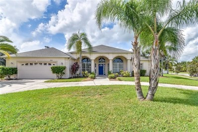 3906 Countryside View Court, Saint Cloud, FL 34772 - MLS#: O5739578