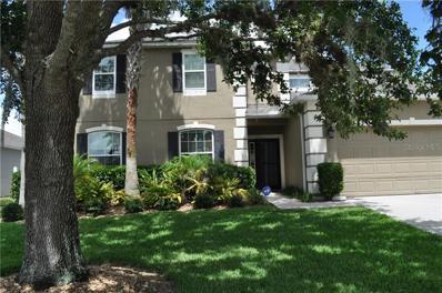 818 Shadowmoss Drive, Winter Garden, FL 34787 - MLS#: O5739772