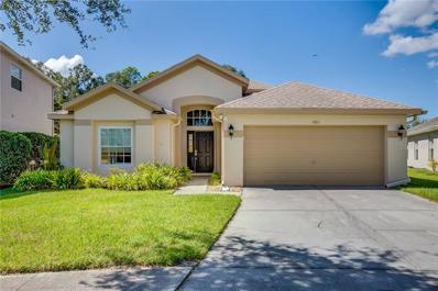 6801 Bluff Meadow Court, Wesley Chapel, FL 33545 - MLS#: O5740743