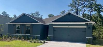 222 Wood Hollow Road, Deland, FL 32724 - MLS#: O5740837