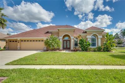 3330 Leaf Lake Drive, Land O Lakes, FL 34639 - MLS#: O5741273