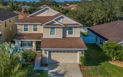 11134 Irish Moss Avenue, Riverview, FL 33569 - MLS#: O5741434