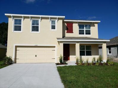 11849 Myrtle Rock Drive, Riverview, FL 33578 - MLS#: O5741512