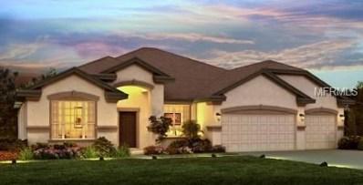 10412 Cardera Drive, Riverview, FL 33578 - MLS#: O5741634