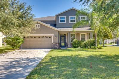 12446 Chenwood Avenue, Hudson, FL 34669 - MLS#: O5742158