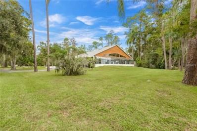 13714 Lake Mary Jane Road, Orlando, FL 32832 - MLS#: O5743251