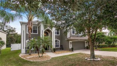 5066 Rishley Run Way, Mount Dora, FL 32757 - #: O5743318