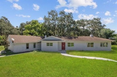 1721 Penzance Road, Clermont, FL 34711 - MLS#: O5743609