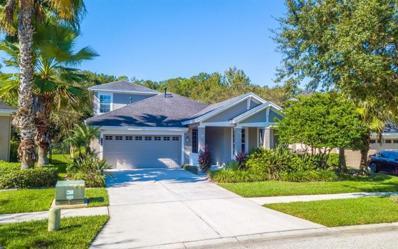 20064 Heritage Point Drive, Tampa, FL 33647 - MLS#: O5743681