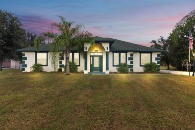 18743 Netherland Street, Orlando, FL 32833 - #: O5743695