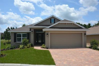 907 Chestnut Drive, Fruitland Park, FL 34731 - MLS#: O5744178