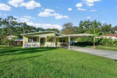 8817 Audrey Lane, Tampa, FL 33615 - MLS#: O5744393