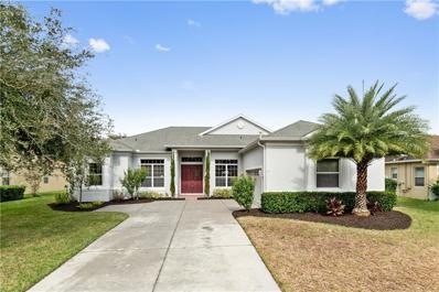 3432 Tumbling River Dr, Clermont, FL 34711 - #: O5744874