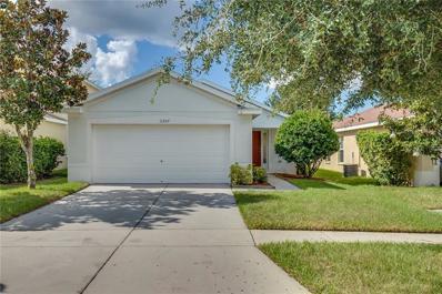 11557 Hammocks Glade Drive, Riverview, FL 33569 - MLS#: O5745235