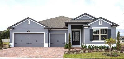 5352 Cosa Del Sol Drive, Saint Cloud, FL 34771 - MLS#: O5746251