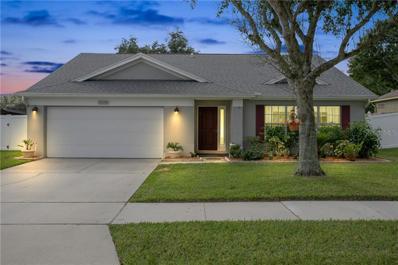 1114 Brandy Lake View Circle, Winter Garden, FL 34787 - MLS#: O5746526