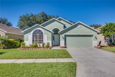 12541 Blazing Star Drive, Tampa, FL 33626 - MLS#: O5747167