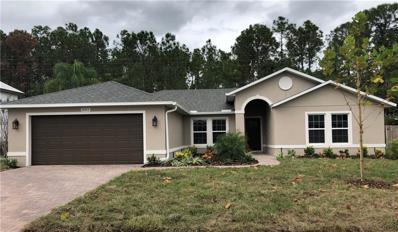 20413 Macon Parkway, Orlando, FL 32833 - #: O5747230