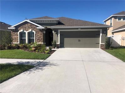 12051 Grand Kempston Drive, Gibsonton, FL 33534 - MLS#: O5747549