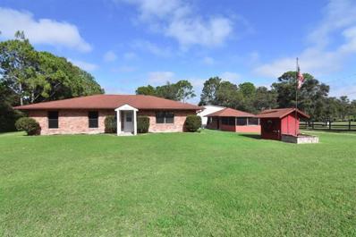 3690 Dunlap Road, Mims, FL 32754 - MLS#: O5747606