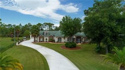 19437 Sheldon Street, Orlando, FL 32833 - MLS#: O5748136