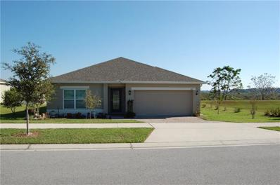 667 Black Eagle Drive, Groveland, FL 34736 - #: O5748363