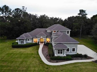 2529 River Tree Circle, Sanford, FL 32771 - MLS#: O5749715