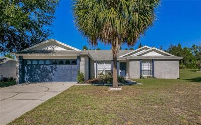 2304 Clementine Trail, Clermont, FL 34714 - MLS#: O5749868