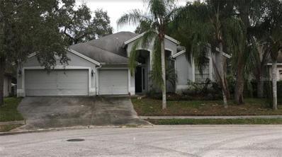 328 Liam Avenue, Tarpon Springs, FL 34689 - MLS#: O5750237