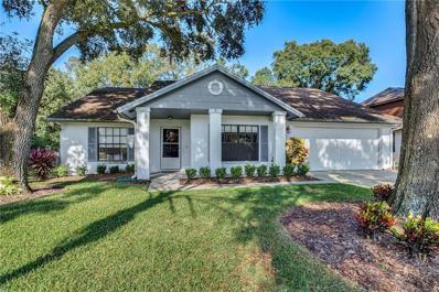 15002 Redcliff Drive, Tampa, FL 33625 - MLS#: O5750811