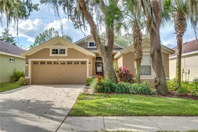 6113 Gannetwood Place, Lithia, FL 33547 - MLS#: O5751112