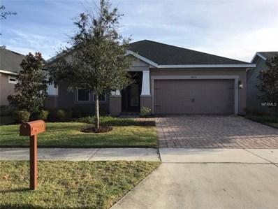 10676 Langefield Street, Orlando, FL 32832 - #: O5752043