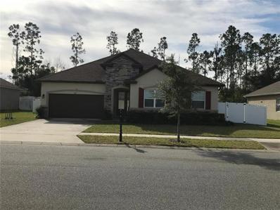 1005 Garrett Gilliam Drive, Ocoee, FL 34761 - #: O5754919