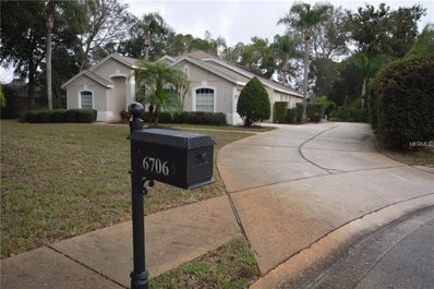 6706 Bell Glade Place, Sanford, FL 32771 - #: O5754944