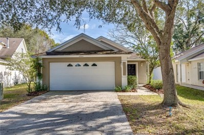 14904 Deer Meadow Drive, Lutz, FL 33559 - #: O5755984