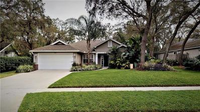 319 Oak Leaf Circle, Lake Mary, FL 32746 - #: O5756260
