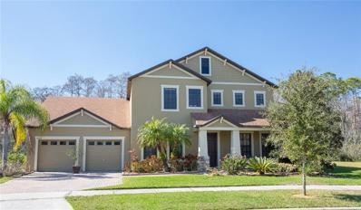10166 Caroline Park Drive, Orlando, FL 32832 - #: O5760795
