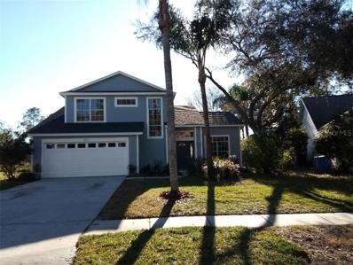 17711 Esprit Drive, Tampa, FL 33647 - #: O5762762