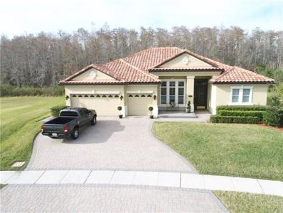 2510 Swoop Circle, Kissimmee, FL 34741 - #: O5764375