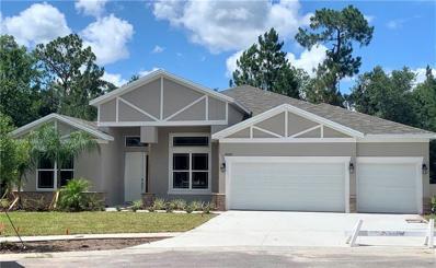 27027 Sora Boulevard, Wesley Chapel, FL 33544 - MLS#: O5764606